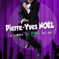Pierre Yves Noel