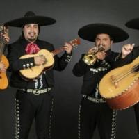 Les Mariachis - Mexique